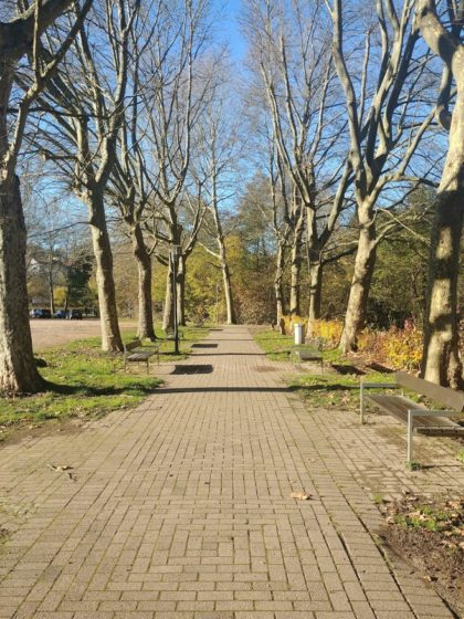 Im Burgpark