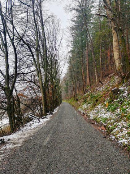 Ab etwa Neckarhäuserhof ist der Weg geschottert