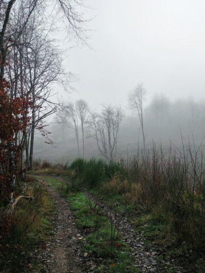 """""""Ein Nebel hat das Land so weich zerstört"""""""