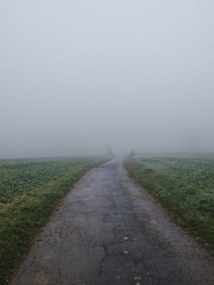 Der Nebel hält sich hartnäckig