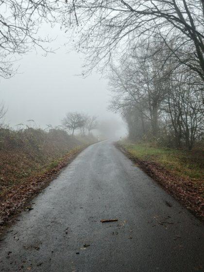 Mittlerweile bin ich auf den Wendelinus-Pilgerweg gewechselt