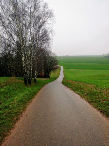 Ungefähr hier verläuft die Gemarkungsgrenze zweichen Lebach und Eppelborn