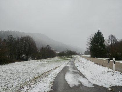 Kurz vor dem 200-Einwohner-Dorf Neckarhäuserhof, das zu Neckargemünd gehört