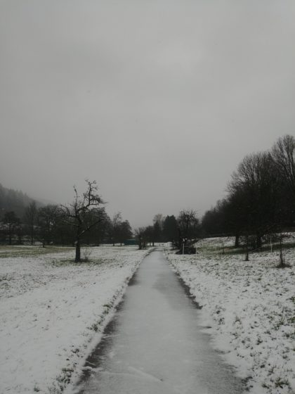 Weiße Erde, grauer Himmel