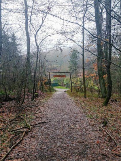 Auf der Höhe von Hoxberg biege ich vom Kaltensteinpfad wieder in Richtung Lebach ab