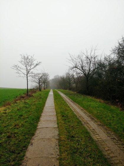 Der Nebel wird immer dichter
