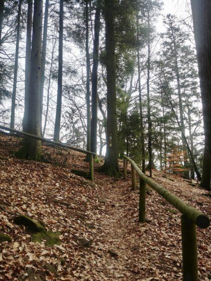 Auf den ersten rund 2 Kilometern geht es nur bergauf