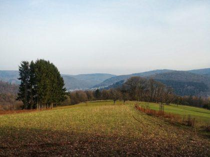 Die Hügel des Odenwalds