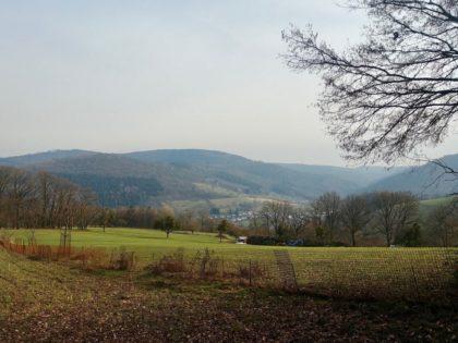 Blick auf Igelsbach
