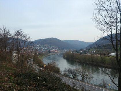 Blick auf den Neckar bei Eberbach - wir sind praktisch am Ziel