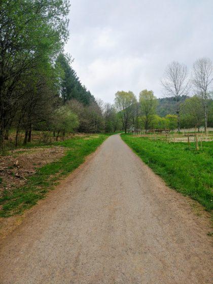 Asphaltweg nach Siersburg