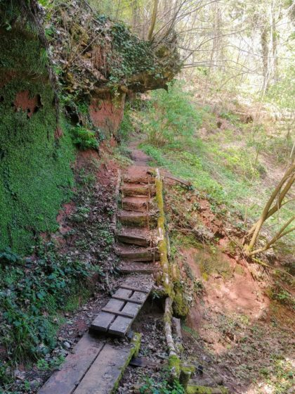 Planken, Stufen und eine Leiter müssen beim Durchstieg durch Tripsborn überwunden werden