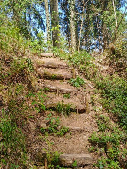 Stufen führen dann auch zum Hauptpfad zurück