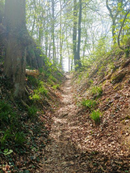 Ich nähere mich dem schönsten Teil des gesamten Wanderweges
