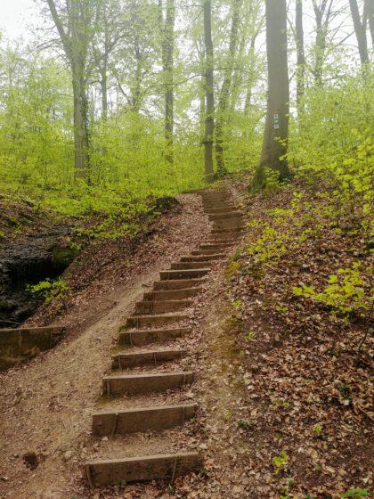 Und wieder ein paar Stufen