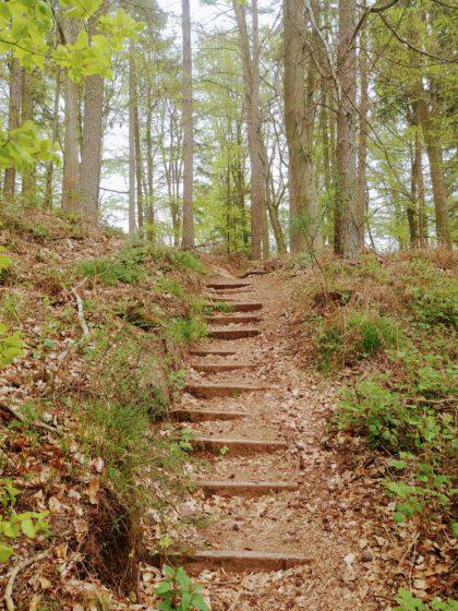 Insgesamt stufe ich den Idesbachpfad am oberen Ende von mittelschwer ein, einen einigermaßen geübten Wanderer vorausgesetzt
