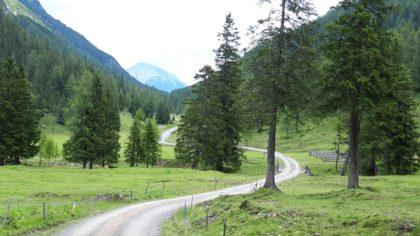 Auf dem Weg zur Tarrenton-Alm in den Lechtaler Alpen/Karl Waldeck
