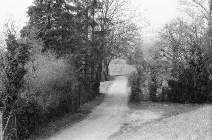 Weg durch die Weinberge zw. Heidelberg und Leimen/Christine R. Auer