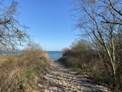 Pfad an der Ostsee in Mecklenburg/Clowniesmama