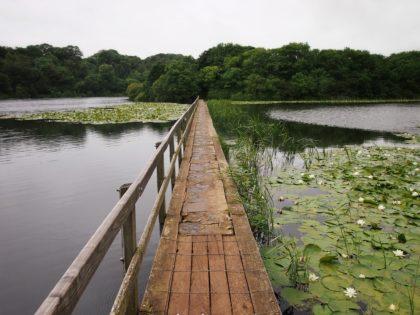 Bocherston Lakes in Pembrokeshire, Wales/GartenGuckloch