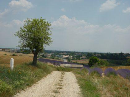Unterwegs in der Provence/Mimi