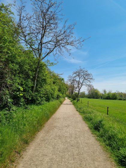 Bei einem Spaziergang auf der Maulbeerinsel fiel der Entschluss für diese Wanderung