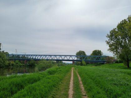 Die Brücke der Feudenheimer Schleuse