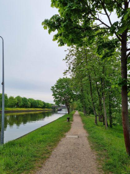 Auf dem Damm der Maulbeerinsel, unmittelbar neben dem Neckarkanal