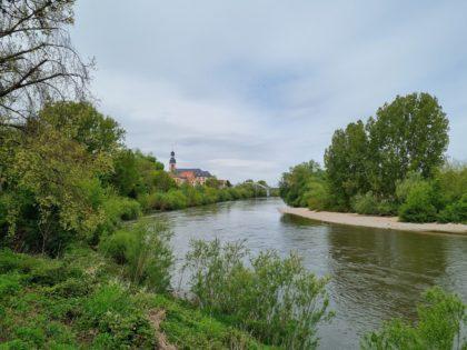 Blick zurück auf Seckenheim