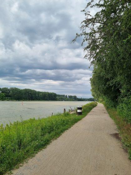 Weg am Rhein entlang