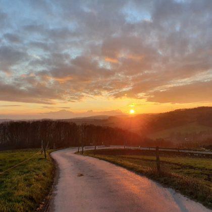 Weg in die Sonne/Sonja S