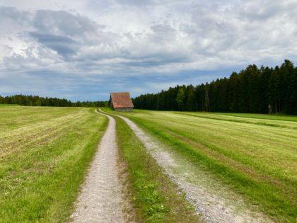Wiesenweg im Nordschwarzwald/Ma la