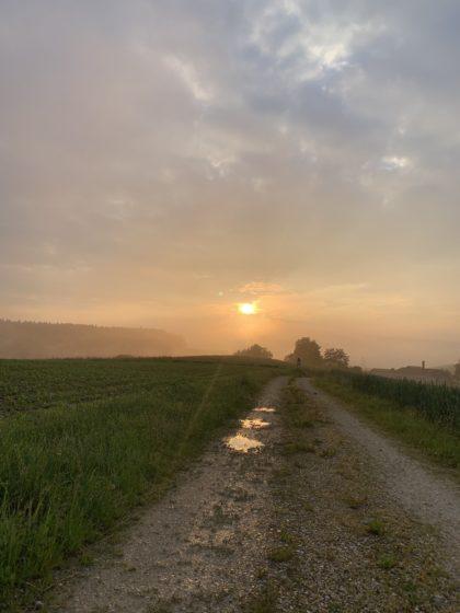 Weg in den Sonnenaufgang/Astrid