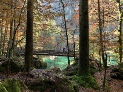 Weg um den Blausee, Schweiz/Ingrid Zenger