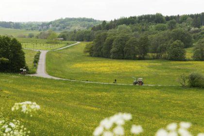 Ländliches Ambiente bei Nettersheim, Eifel/Elke Glatzer