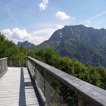 Baumkronenweg, Grünberg am Traunsee/Mara F