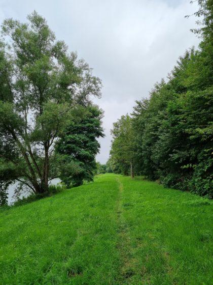 Trampelpfad zwischen Saarfels und Fremersdorf