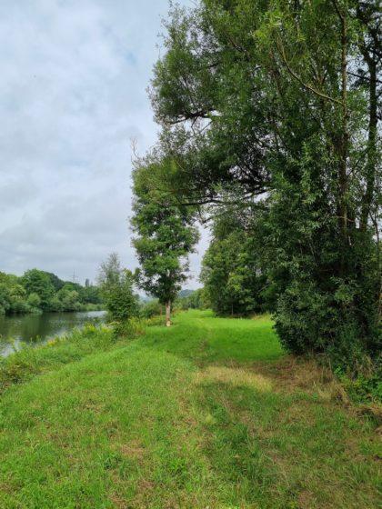 Wunderbares Gehen direkt am Ufer entlang